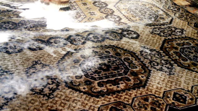 washing carpet with a hand brush - tappeto video stock e b–roll