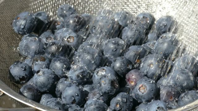 washing fresh blueberry fruits in a strainer