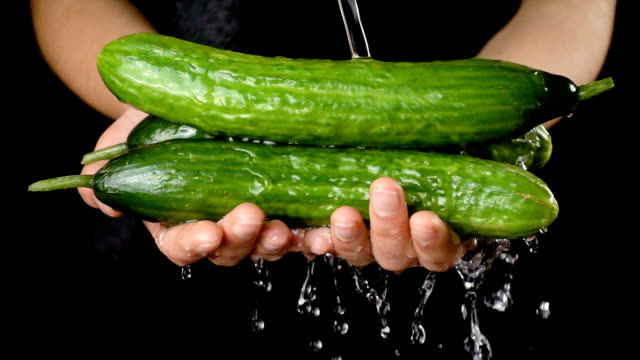 washing the green cucumbers in woman hands, slow motion - cetriolo video stock e b–roll
