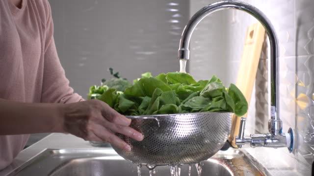 washing vegetables - латук стоковые видео и кадры b-roll