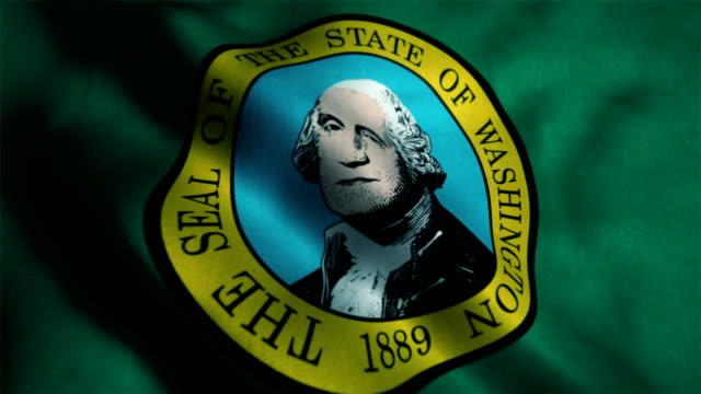 Washington flag waving animation