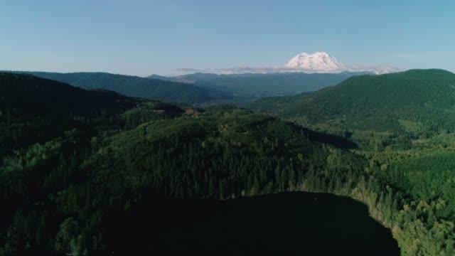 Washington Green Forest Aerial Mt Rainier Background video