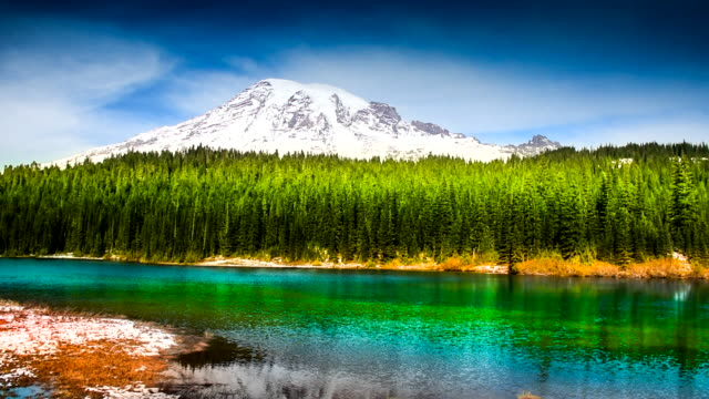 Washington State, Mt Rainier, park