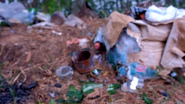 Waste and garbage in forest, blurred nature background, enviromental pollution. video