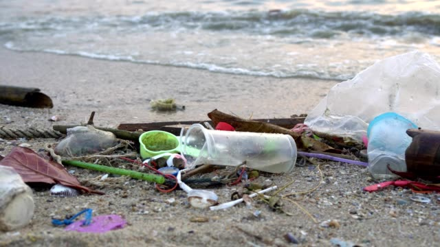 Waste pollution on beach