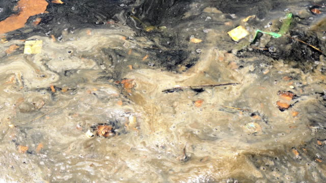 vídeos de stock e filmes b-roll de waste savage water pollution - sem higiene