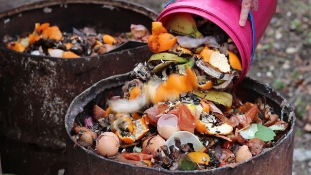 avfall sortering. hem komposten fat - food waste bildbanksvideor och videomaterial från bakom kulisserna