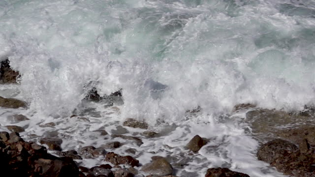 Water and  Rocky Shore video