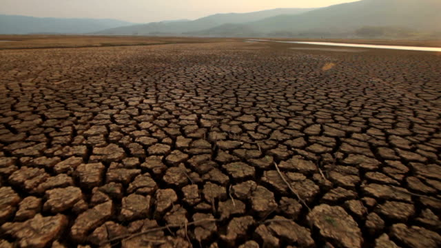 vídeos de stock e filmes b-roll de water crisis - rachado