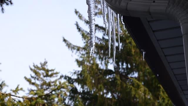 vatten droppar av smältande istapp under tak. - icicle bildbanksvideor och videomaterial från bakom kulisserna