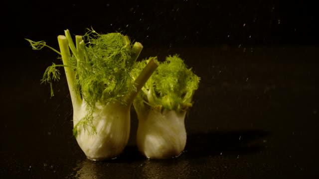stockvideo's en b-roll-footage met water besprenkelen op venkel, ultra slow motion - venkel
