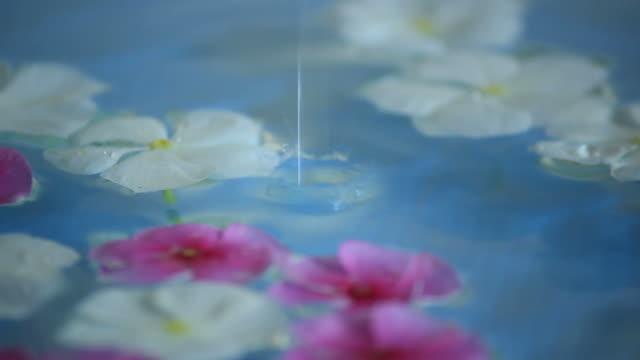 水ドロップします。 - 水に浮かぶ点の映像素材/bロール