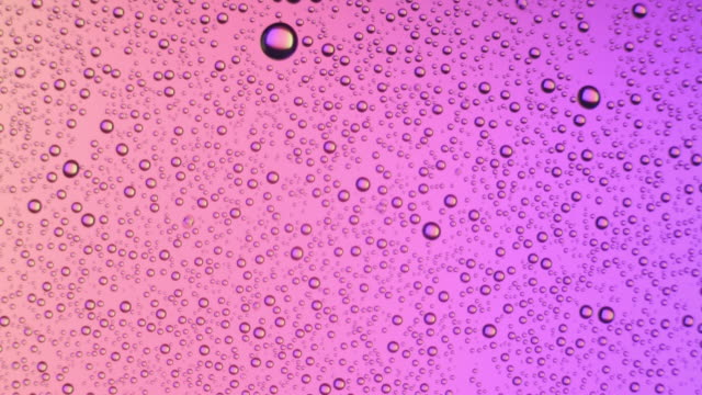 water drops appears on glass surface on pink background - comparsa video stock e b–roll