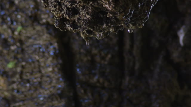 Water drops falling through a rock in an aquatic cave gallery Water drops falling through a rock in an aquatic cave gallery colloid stock videos & royalty-free footage