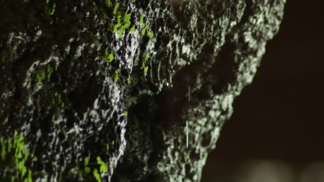 Water drops sliding and falling through the rock in a cave Water drops sliding and falling through the rock in a cave colloid stock videos & royalty-free footage