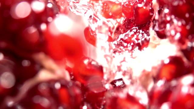 vídeos de stock e filmes b-roll de water flow between pomegranate grains. slow motion - romã