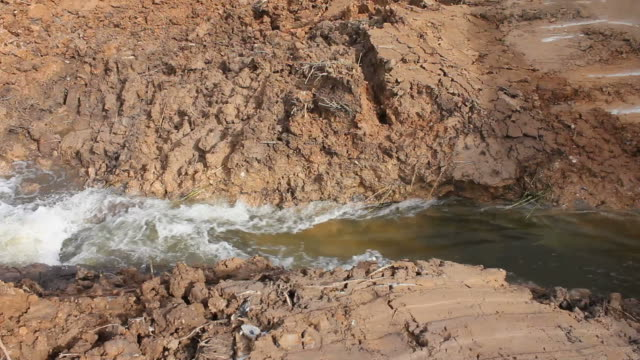 Water flow in the grooves soil. video