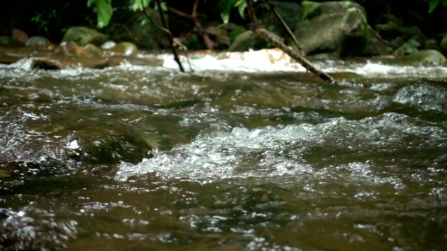 water flowing in streams slow motion. - ручей стоковые видео и кадры b-roll