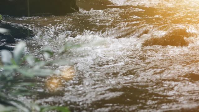 vidéos et rushes de eau qui coule dans les ruisseaux - randonnée équestre