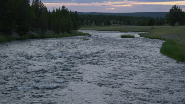 Water Flows Down Firehole River Surrounded by a Forest of Trees in Yellowstone National Park in Wyoming at Sunset