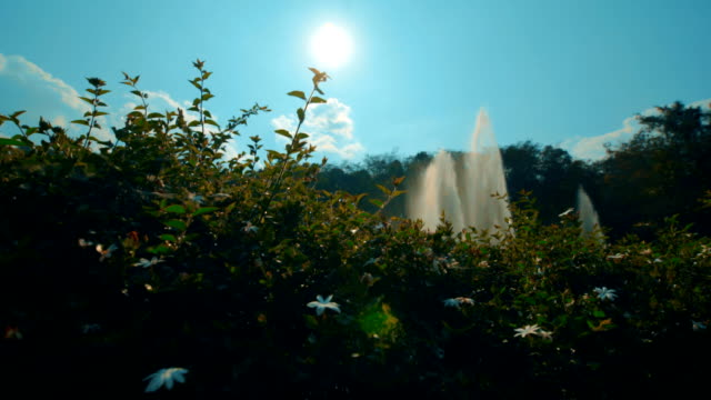 Water fountain at the forest and blue sky. Vintage Color. video