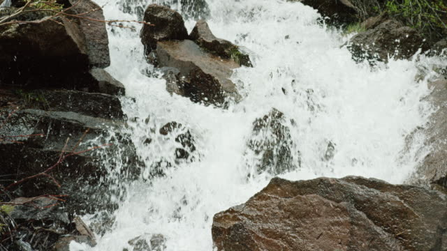 water from a mountain stream falls over rocks and boulders in slow motion - parco nazionale video stock e b–roll
