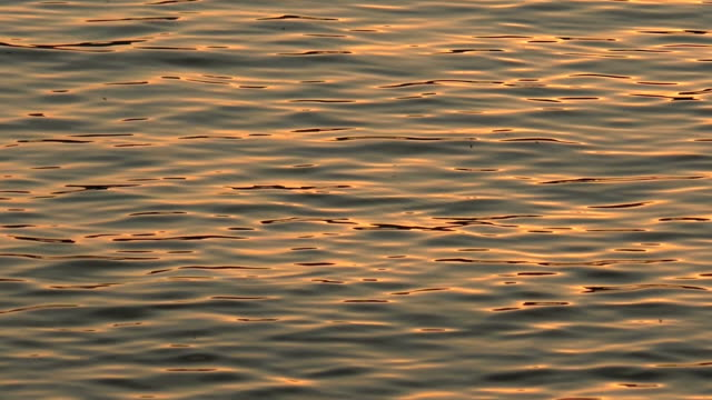 Water In Slow Motion. Reflections. video