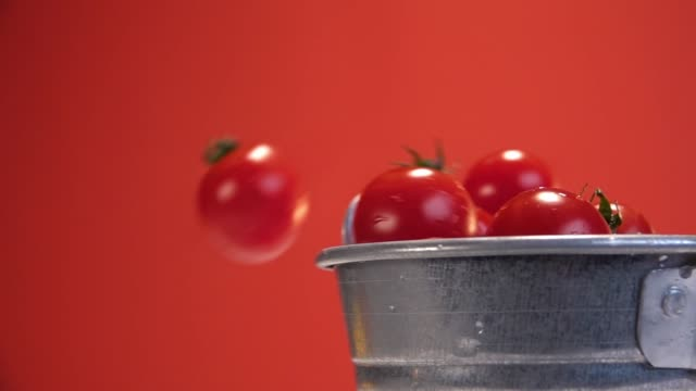 Water is poured on tiny tomatoes red background Slow Motion 240 fps - vídeo