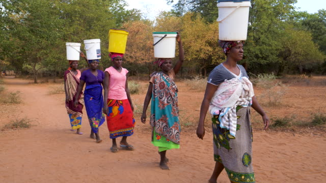water journey. five woman and a baby make the long journey home carry water in plastic containers on their heads after pumping it from a communal water pump, zimbabwe - portare video stock e b–roll