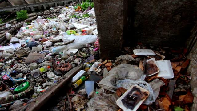 water pollution in river of bangkok, thailand.dolly shot. - food waste bildbanksvideor och videomaterial från bakom kulisserna