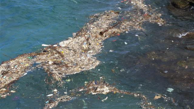 vídeos de stock e filmes b-roll de water pollution in the ocean, sunny day in chaojing park, keelung city taiwan - oceano pacífico