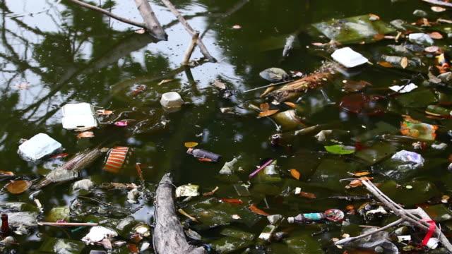 水質汚染 - 水に浮かぶ点の映像素材/bロール