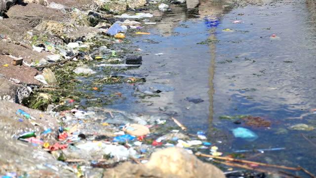 water pollution - vattenbryn bildbanksvideor och videomaterial från bakom kulisserna