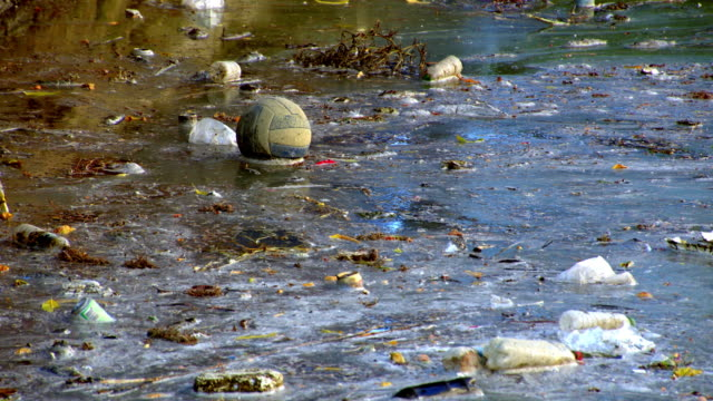 Water Pollution Wasted