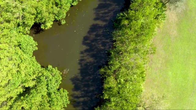 water river canal park follow birds eye aerial view - gulf coast states stock videos & royalty-free footage