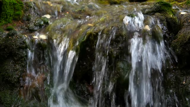 water runs over rocks and moss video
