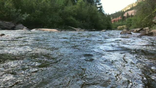vatten rusar över klipporna i san miguel river i västra colorado på en solig höst dag video - klippiga bergen bildbanksvideor och videomaterial från bakom kulisserna