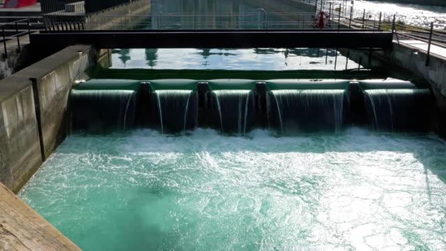 Water spike and Spreuer bridge, Lucerne, Switzerland