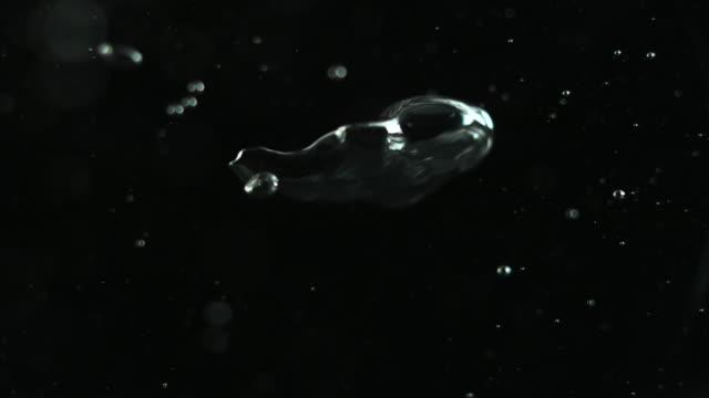 water splash on black backround - bubble стоковые видео и кадры b-roll