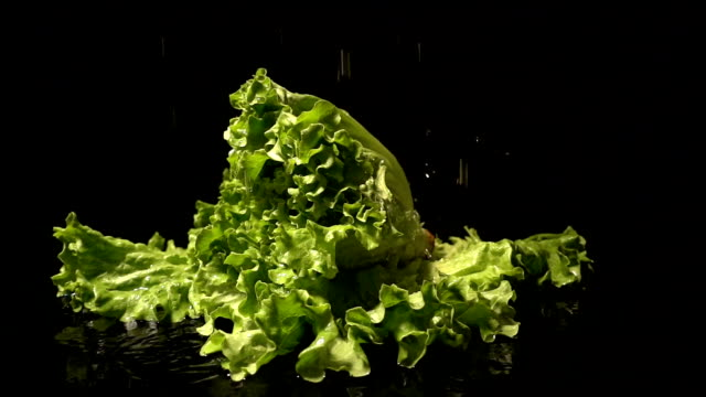 Water Splash On Lettuce video