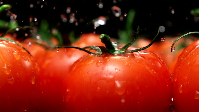 Water splash auf Tomaten, Zeitlupe – Video