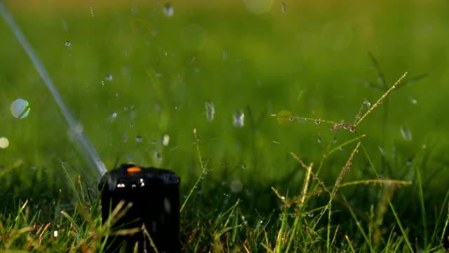 wasser-sprinkler zeitlupe pop-up - bewässerungsanlage stock-videos und b-roll-filmmaterial
