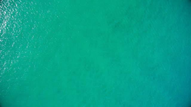 water surface of pacific ocean - krajobraz morski filmów i materiałów b-roll