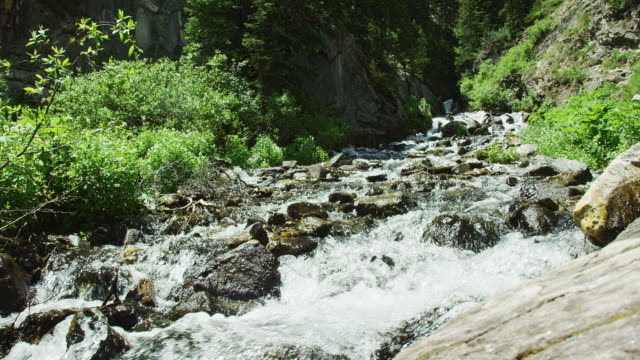 Water Trickles down a Mountain Stream in the Rocky Mountains in Colorado on a Sunny Summer Day