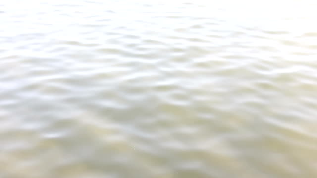 water wave in lake video