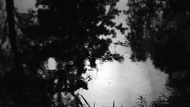 water with reflection flowing dawn video