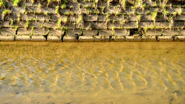 water with reflection water with reflection double refraction stock videos & royalty-free footage