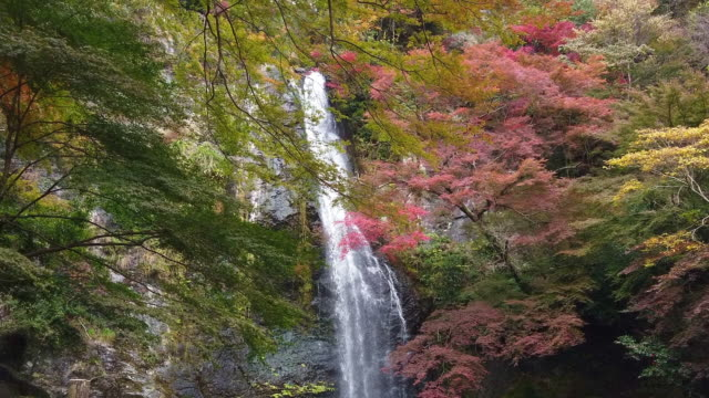 Waterfall and colorful autumn maple leaves background at Momiji Japan.