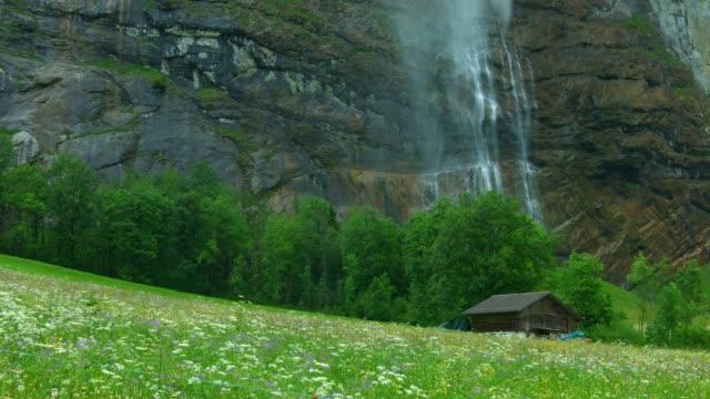 vattenfall och blommor field på lauterbrunen schweiz - wengen bildbanksvideor och videomaterial från bakom kulisserna