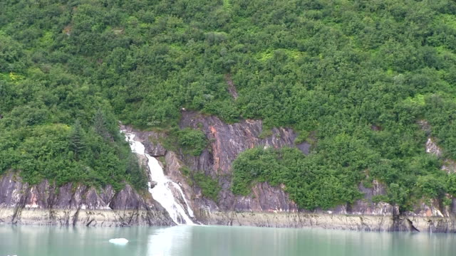 Waterfall and icebergs in Alaska at Tracy Arm Fjord. video